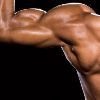 Supersize your Biceps – Without a Single Curl Featured Image