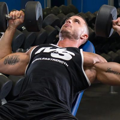 The Ultimate Guide to Building a Massive Chest Featured Image